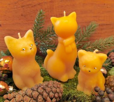 3er Set Katzenbande
